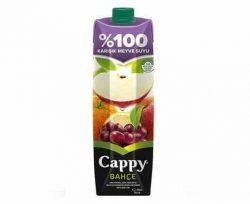 Cappy Elma-Karışık 0 1 lt