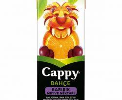 Cappy Karışık 200 ml