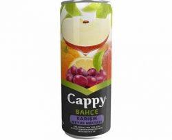 Cappy Karışık Meyve 330 ml
