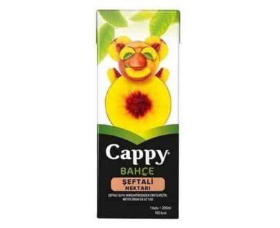 Cappy Şeftali 200 ml