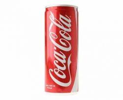 Coca Cola Kutu 250 ml