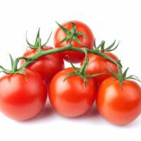 domates salkım kg