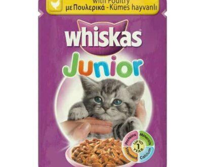 Whiskas Kümes Hayvanlı Yavru Kedi Maması 100 g