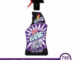 Cillit Bang Banyo Temizleyici Derz Sprey 750 ml