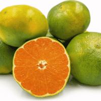 mandalina yeşil naturel kg