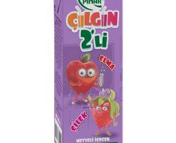 Pınar Çılgın İkili Elma Çilek 200 ml